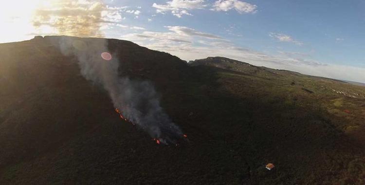 Brigadistas e Bombeiros atuam no combate das chamas - Foto: Secretaria do Meio Ambiente da Bahia