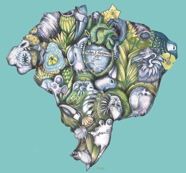 A ilustradora Anita Dominoni desenhou um Brasil cercado por ratos e abutres - Foto: Anita Dominoni