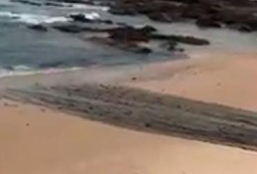 Internautas acusam prefeitura de jogar sujeira no mar; Seman nega ser esgoto
