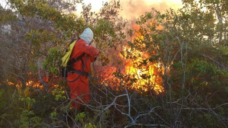 As chamas atingem o povoado de Socotó em Campo Formoso - Foto: Divulgação | Corpo de Bombeiros