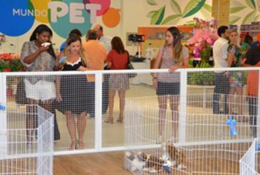 Feira de adoções de animais volta a ser realizada neste sábado