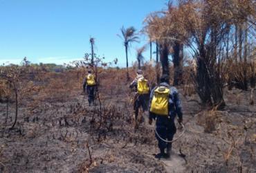 Bombeiros mantém combate a incêndio em Praia do Forte