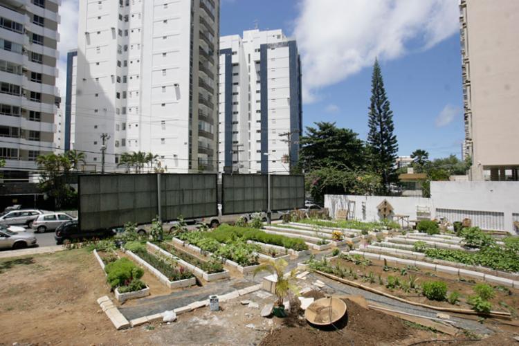 Área situada na Av. Paulo VI, na Pituba, agora serve ao plantio de hortaliças, leguminosas e árvores frutíferas - Foto: Raul Spinassé | Ag. A TARDE | 10.03.2017