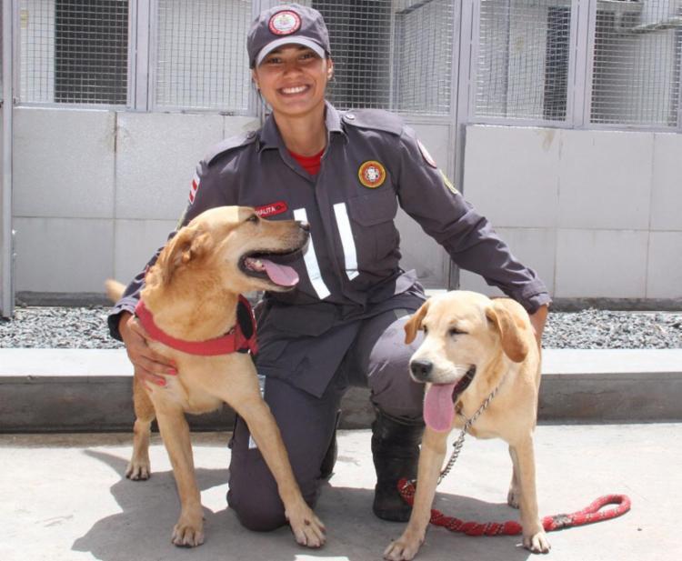 Além de treiná-los, Thalita atua na Busca e Resgate com cães - Foto: Jorge Cordeiro | SSP