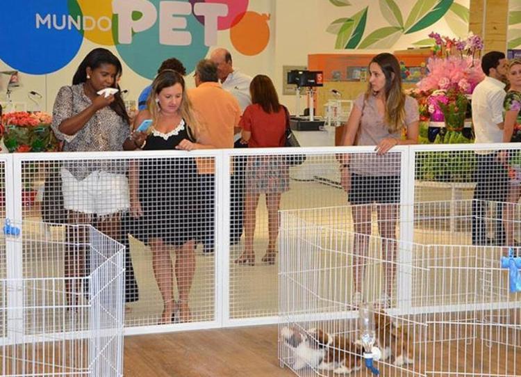 Feira de adoção no Mundo Pet será realizada neste sábado e domingo - Foto: Divulgação