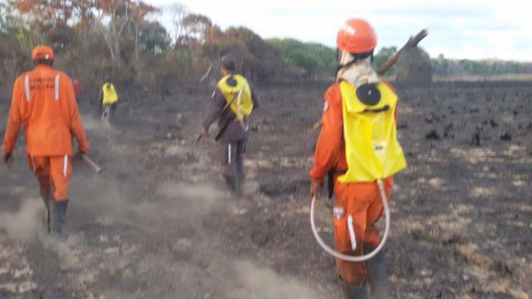 Bombeiros fazem rescaldo para evitar novos focos de incêndio - Foto: Divulgação | Corpo de Bombeiros