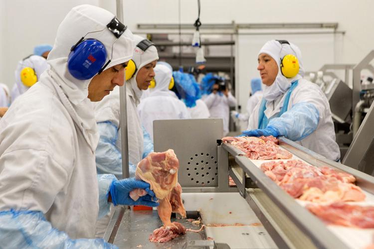 Operários trabalham na linha de produção de carne de frango em frigorífico do grupo JBS-Friboi, no Paraná - Foto: Rodrigo Fonseca l AFP Photo