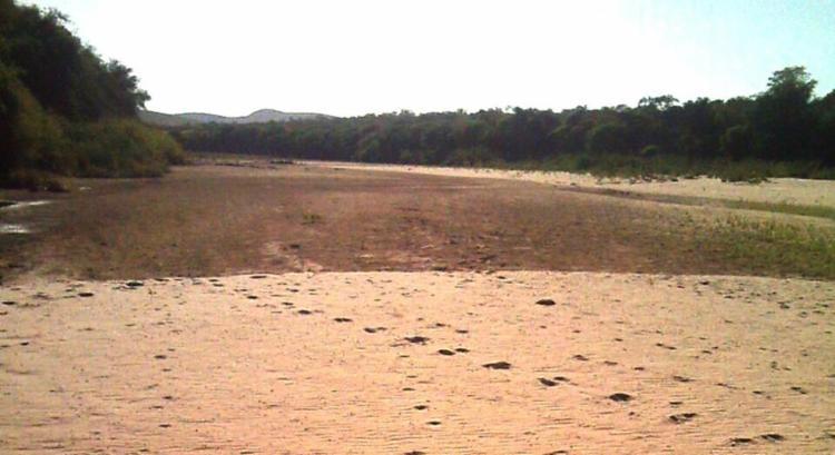 Seca deixa 52% dos municípios da Bahia em situação de emergência - Foto: Foto do leitor l Antônio Galdino