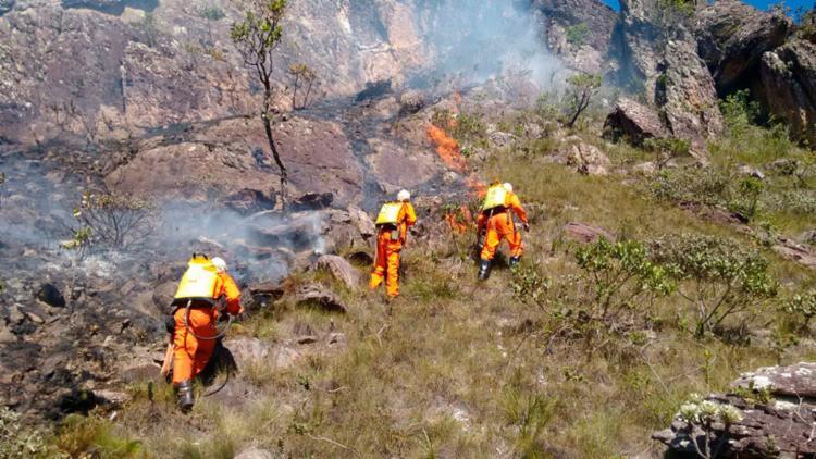 Bombeiros trabalham para tentar controlar as chamas - Foto: Divulgação | Corpo de Bombeiros