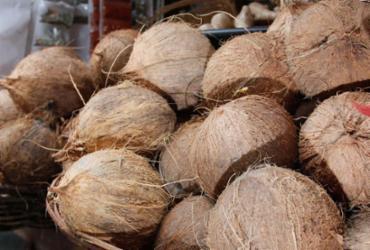 Pesquisas reprovam uso de óleo de coco em dietas