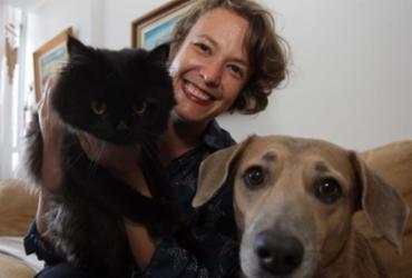 Escolha de serviços para pets exige cuidado