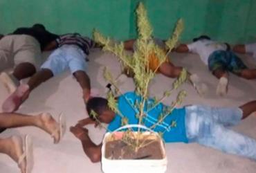 """Dezesseis pessoas são presas em """"festa da maconha azul"""" na Bahia"""