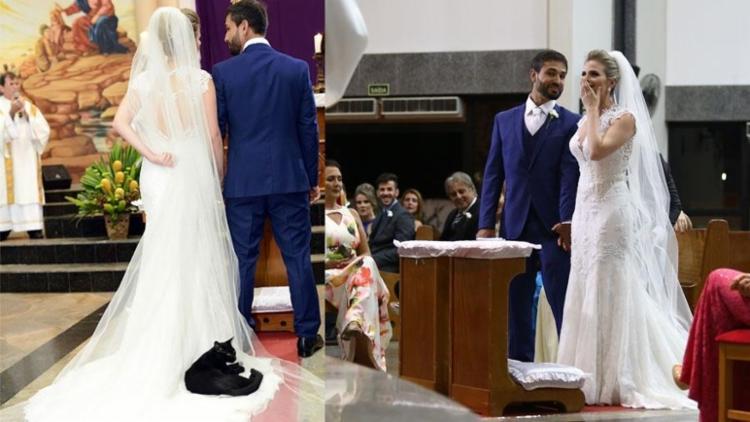 O gato se acomoda muito bem no vestido da noiva - Foto: Wagner Breciane/Timóteo Sodré | Divulgação
