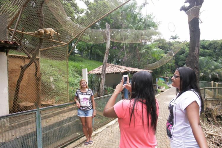 Jaulas onde ficam os macacos foram protegidas com telas - Foto: Luciano da Matta | Ag. A TARDE