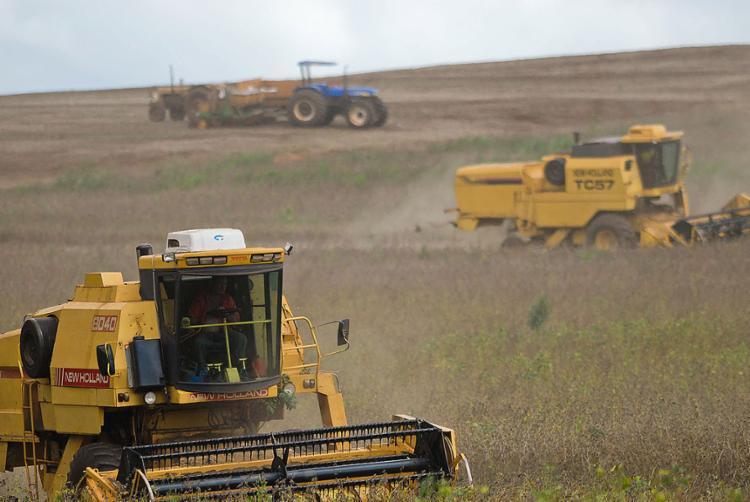 Setor agropecuário criou 658 novas vagas em março - Foto: Jonas Oliveira