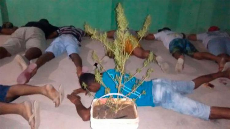 Grupo é suspeito de formação de quadrilha de tráfico de drogas no muncícipio - Foto: Reprodução   Blog do Eloilton Cajuhy