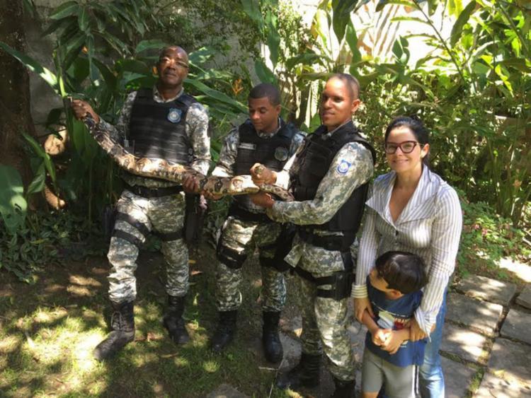 Guarda Municipal foi acionada pela moradora da casa - Foto: Divulgação | Secom