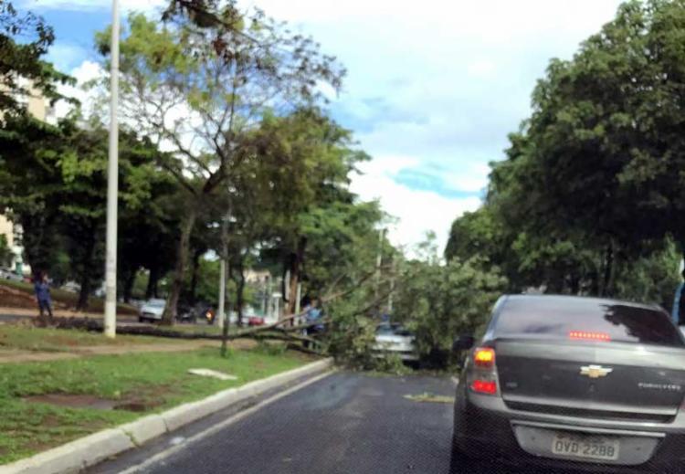 Acidente ocorreu na tarde desta terça, no bairro de Ondina - Foto: Foto Leitor | Whatsapp