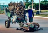 Cavalo não aguenta peso de carroça e cai em Luís Eduardo | Foto: