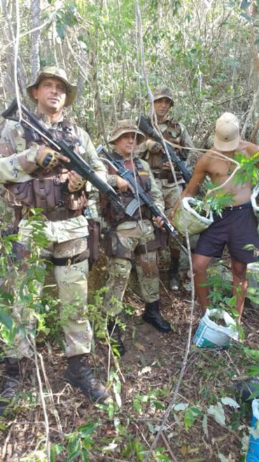 Um homem foi preso durante a apreensão da maconha - Foto: Divulgação | SSP