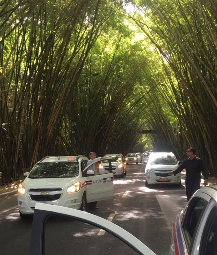Congestionamento já atinge as mediações dos bambuzais do aeroporto - Foto: Cidadão Repórter