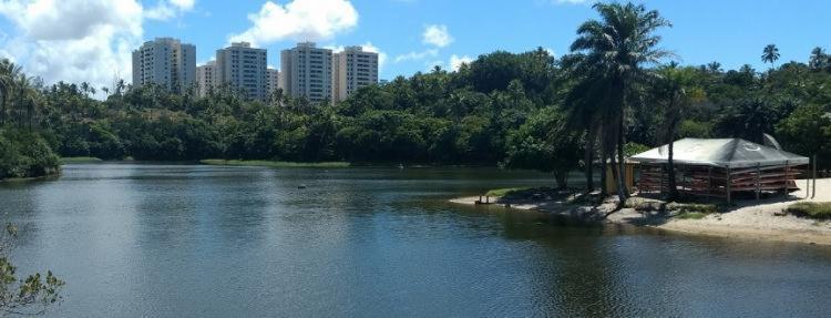 Jovem se afogou no Parque de Pituaçu - Foto: Reprodução | Google Street View