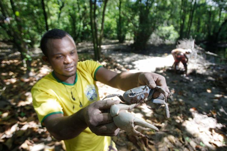 Captura do animal é sustento de Florisvaldo Pereira - Foto: Raul Spinassé | Ag. A TARDE