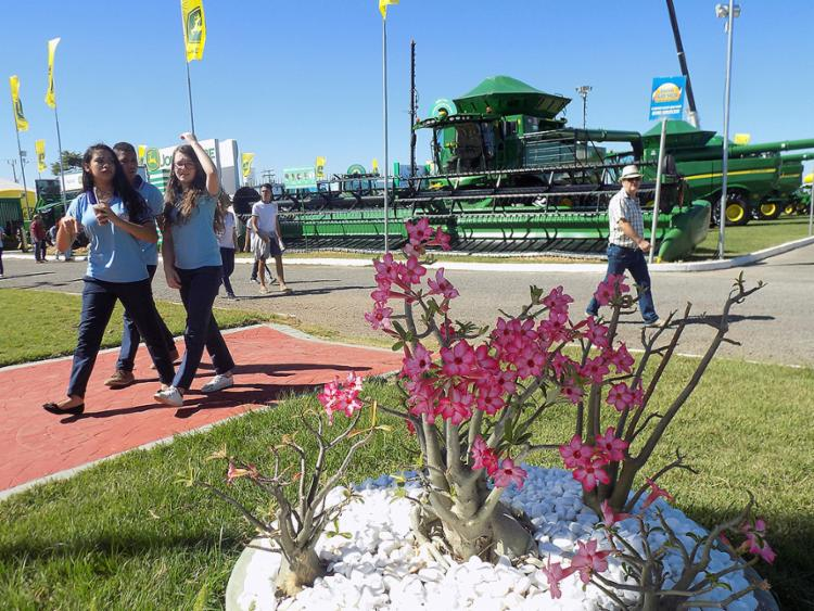 Feira agropecuária, que acontece até o sábado espera receber este ano cerca de 60 mil visitantes - Foto: Miriam Hermes l Ag. A TARDE