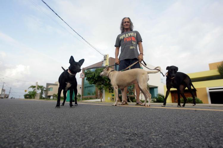 Morador de um condomínio de casas, Lon Bové tem três cachorros que recolheu na rua - Foto: Mila Cordeiro | Ag. A TARDE