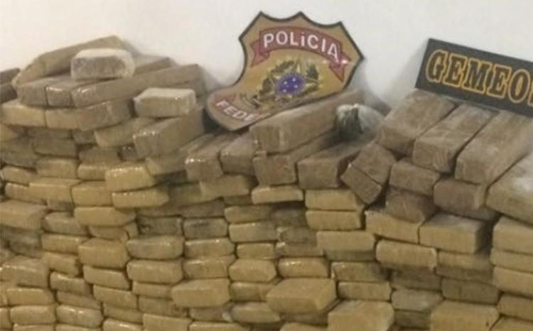 Galpão abrigava cocaína e maconha - Foto: Divulgação l SSP-BA
