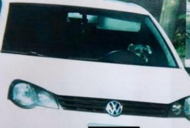 Radar de trânsito flagra cachorro ao volante em rua de Blumenau