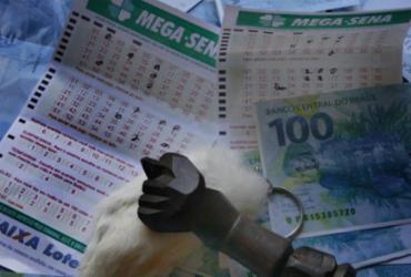 Mega-Sena não sai e prêmio acumula em R$ 105 milhões