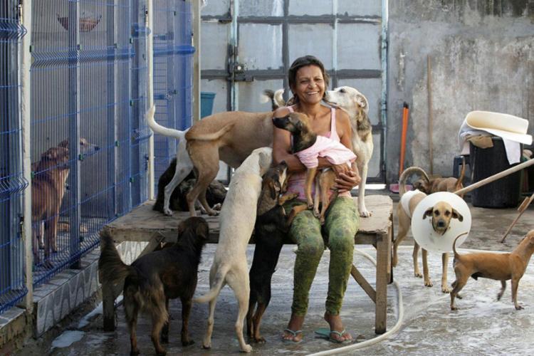 Entidade abriga 112 cães e 19 gatos no Jardim das Magaridas - Foto: Margarida Neide | Ag. A TARDE