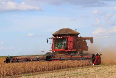 Setor de agronegócio atrai profissionais de outras áreas