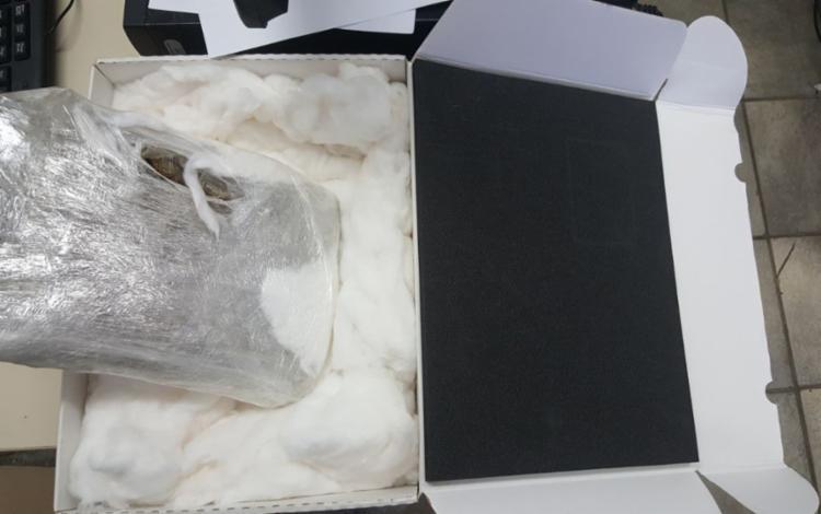 Os pacotes continham 220 gramas de haxixe e 1,8 quilo de maconha, tipo skank. - Foto: Divulgação | SSP-BA