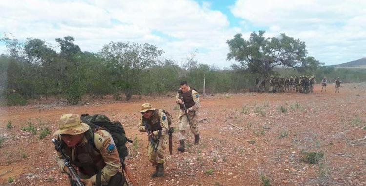 A droga foi achada após investigação da Cipe/Caatinga, que usou um drone para localizar a plantação do alto - Foto: Divulgação | SSP-BA
