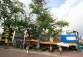 Frota de ônibus será reforçada no final de semana para o Festival da Primavera | Foto: