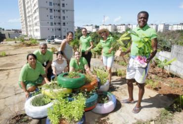 Horta comunitária cria opção de alimentação saudável