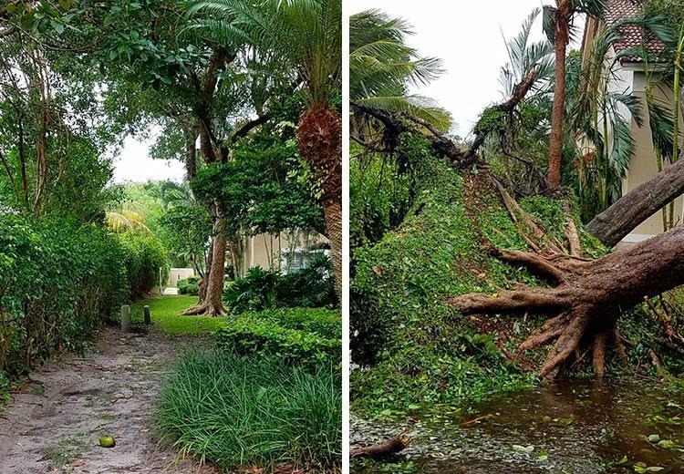 Varanda da casa antes e depois da passagem do furacão