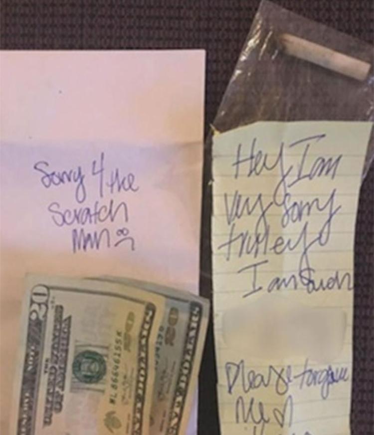 Americana achou pedido de desculpe engraçado - Foto: Mandi Shepard | Arquivo Pessoal