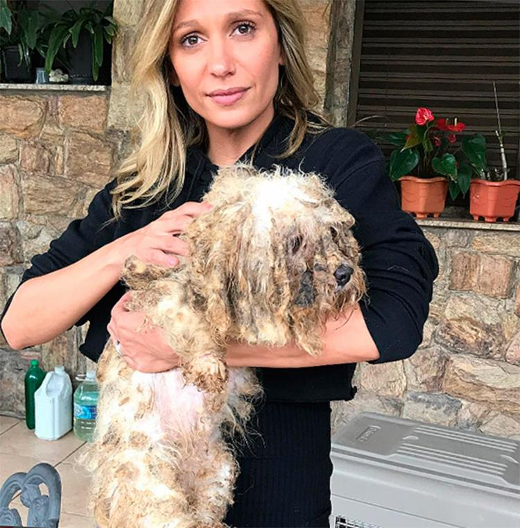 Apresentadora Luísa Mell, dona da ONG, denunciou o canil - Foto: Reprodução | Instagram