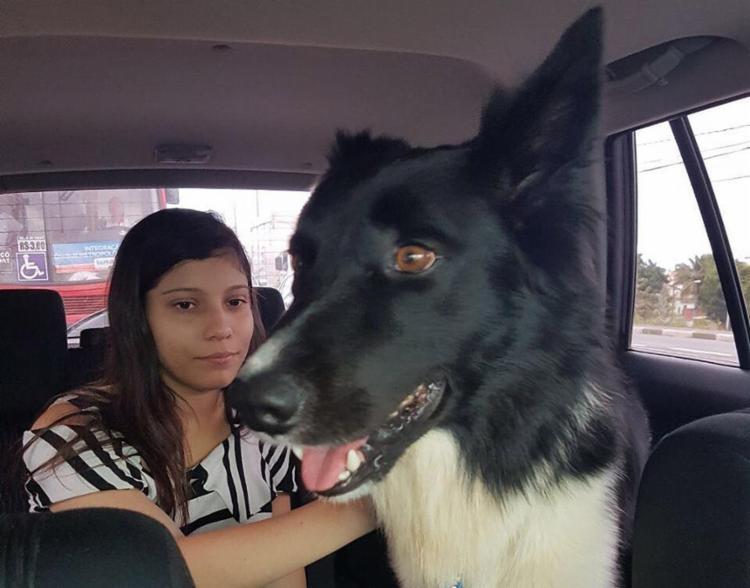 Animal foi encontrado em um Pet Shop - Foto: Arquivo pessoal