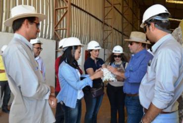 Cadeia do algodão é apresentada a empresas de logística