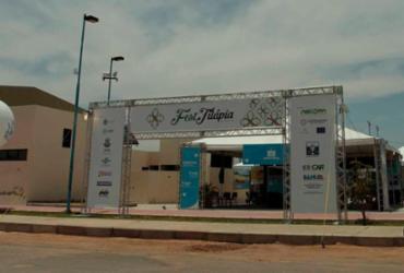 Feira de Negócios da Aquicultura movimenta R$ 13 milhões em Glória