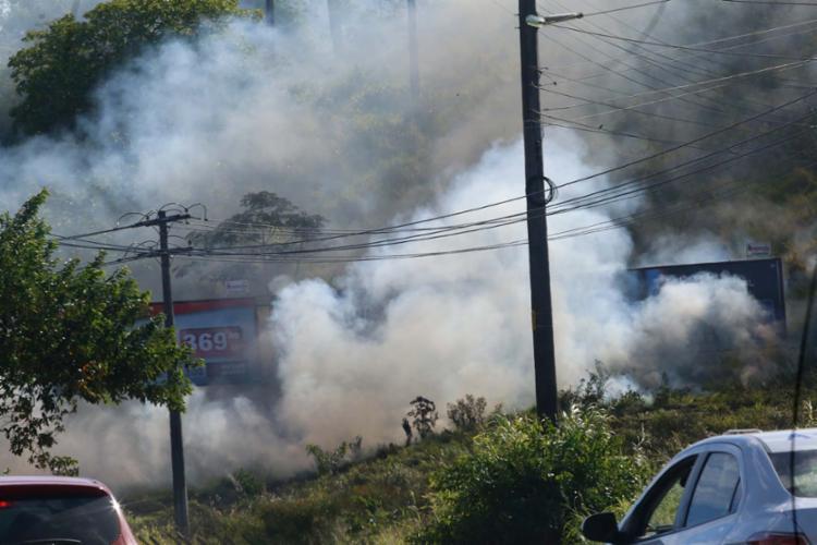 Queima em vegetação marginal à avenida causa preocupação no trânsito - Foto: Margarida Neide   Ag. A TARDE