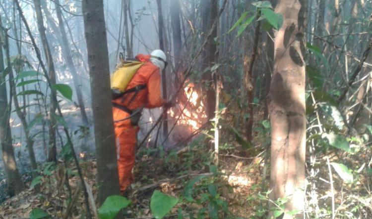 Município de Luís Eduardo Magalhães registrou focos de incêndio nos últimos dias - Foto: Divulgação