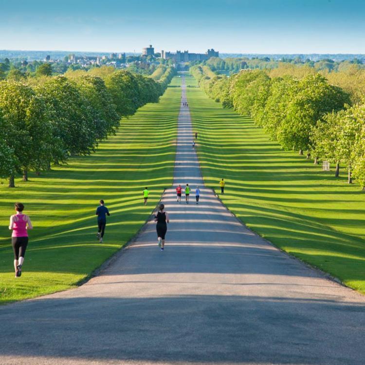Windsor Great Park, localizado nos arredores de Londres - Foto: Reprodução | Facebook
