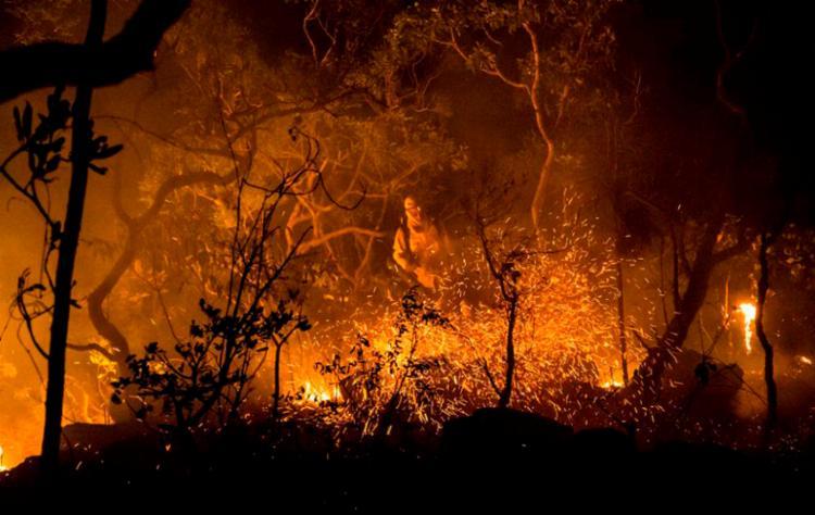 Matas ciliares e mananciais foram destruídos pelo fogo, em função do clima seco e falta de chuva - Foto: Instituto Chico Mendes | Divulgação
