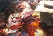 Carne adulterada que seria comercializada em Salvador é apreendida no interior | Foto: