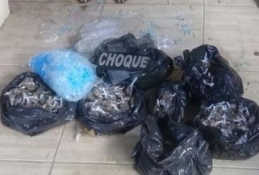 Cães da PM acham 5 mil pinos de cocaína enterrados em Valéria